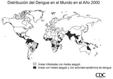 Mosquito trasmisor dengue [MegaPost] (JD)
