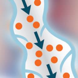 varices en las piernas tratamiento en las venas